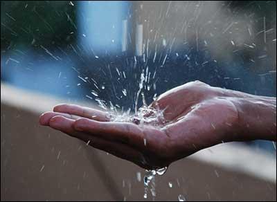 дождевая вода для волос