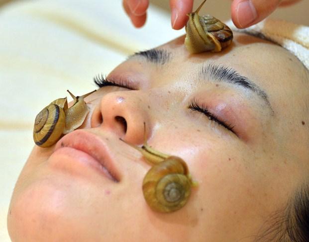 В Японии проводится омоложение кожи при помощи улиток