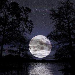 Влияние луны на здоровье женщины