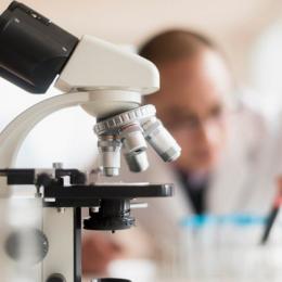 Гистологическое исследование и его принципы